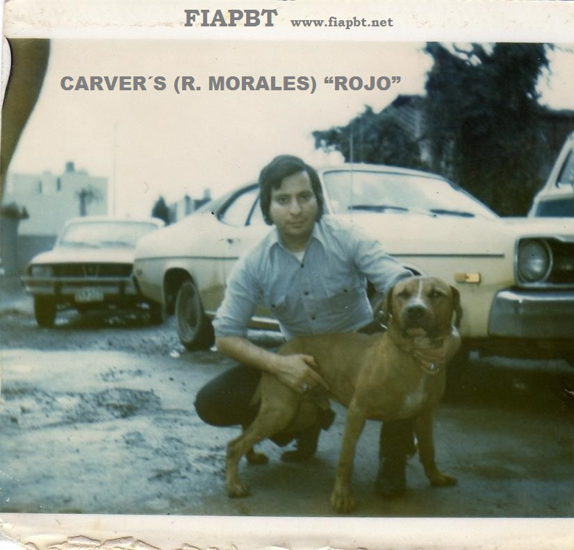 history on eli/carver
